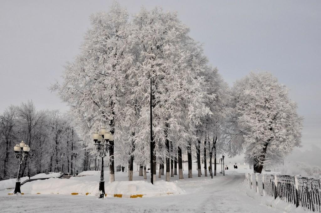 Владимир Снежный 06