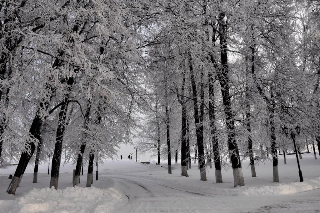 Владимир Снежный 08