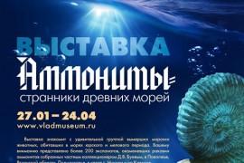 Выставка «Аммониты – странники древних морей»