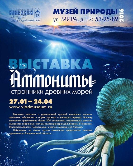 Выставка «Аммониты – странники древних морей» 01