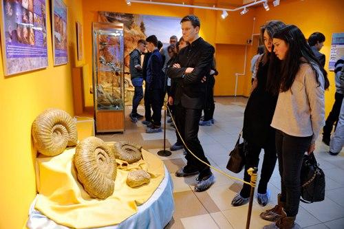 Выставка «Аммониты – странники древних морей» 05