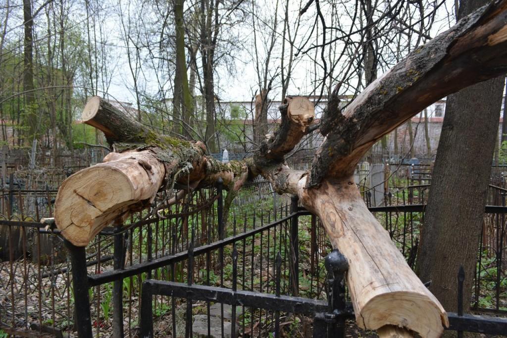 Князь-Владимирское кладбище во Владимире. Обзор Кирилла Климова 07