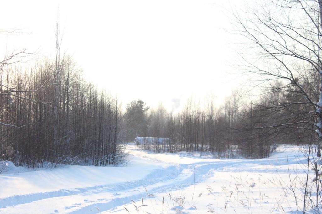 Красота природы Гусь-Хрустального района 04