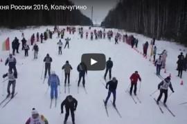 Лыжня России 2016, Кольчугино