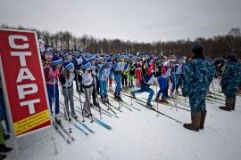 Лыжня России 2016, Владимир