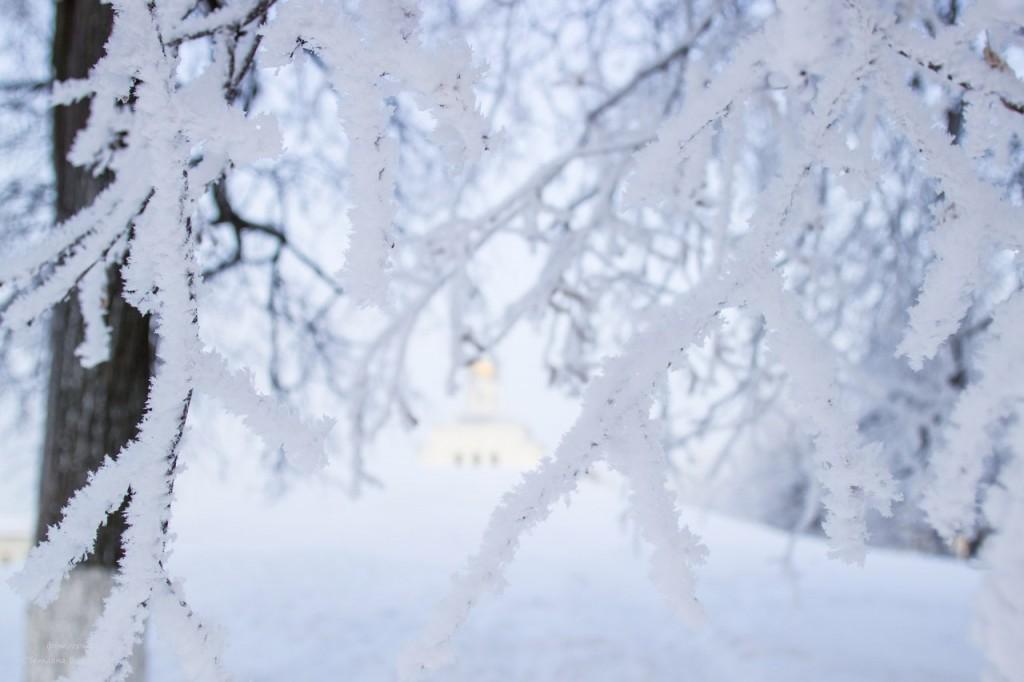 Мороз. Зима. Красота. Владимир 07