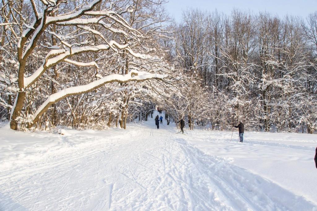 Мороз. Зима. Красота. Владимир 09