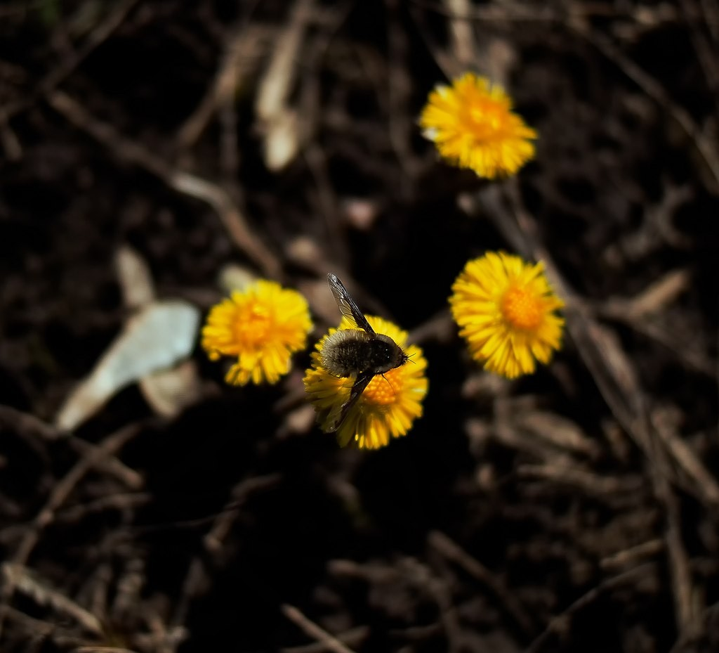 На природе в Муроме 04
