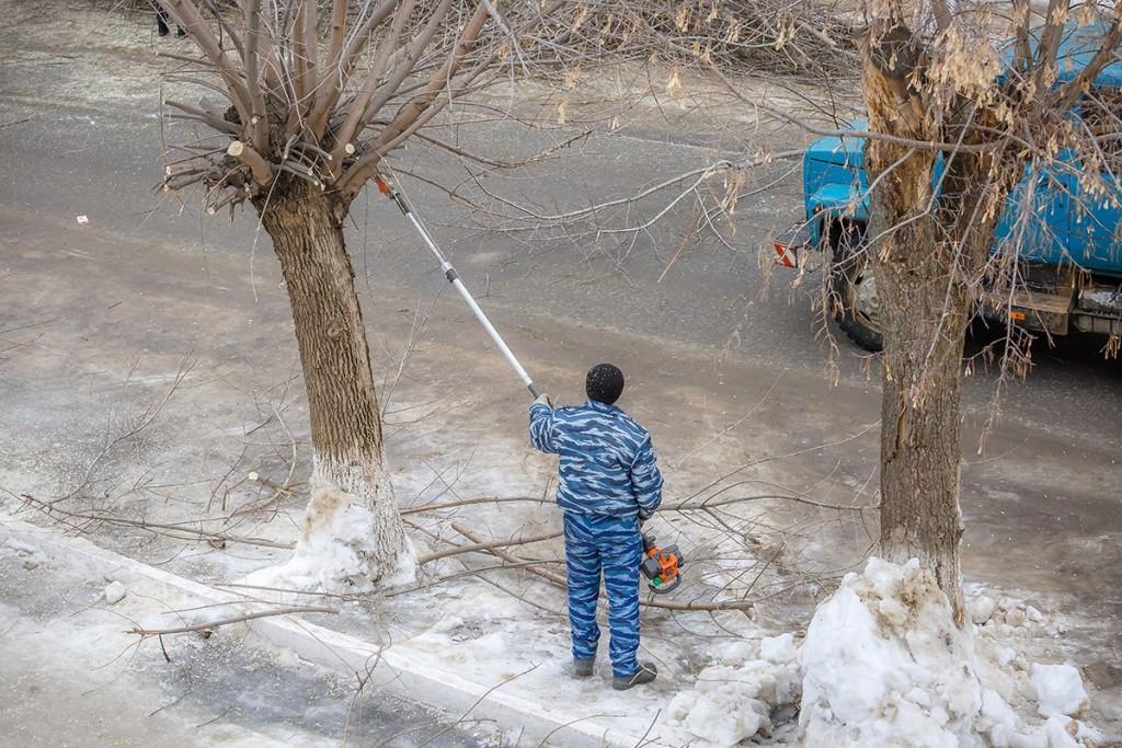 Обрезка деревьев на улицах Мурома 02