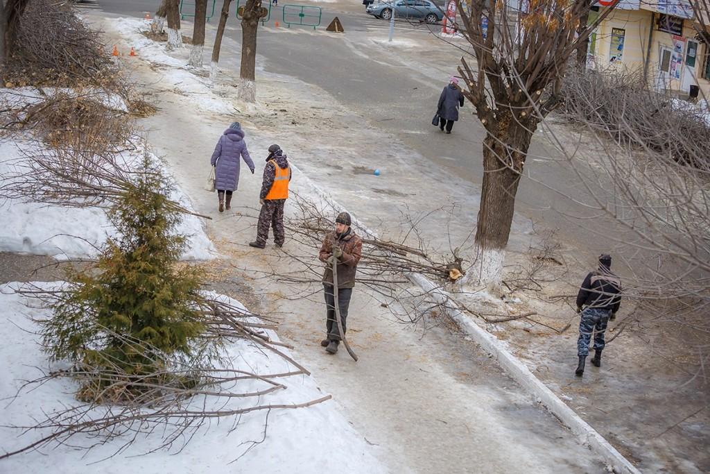 Обрезка деревьев на улицах Мурома 03