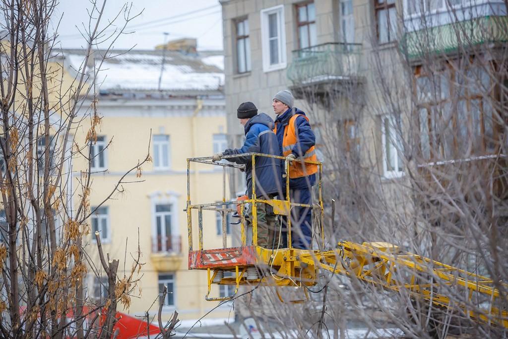 Обрезка деревьев на улицах Мурома 04