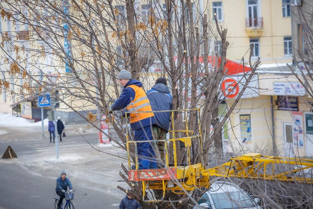 Обрезка деревьев на улицах Мурома 05