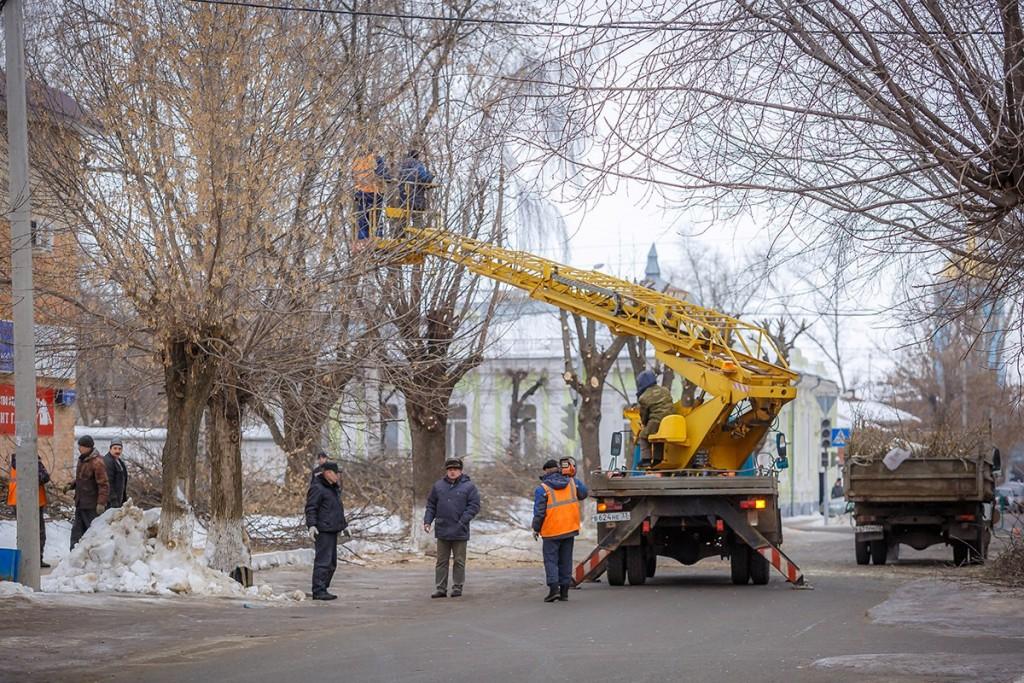 Обрезка деревьев на улицах Мурома 06