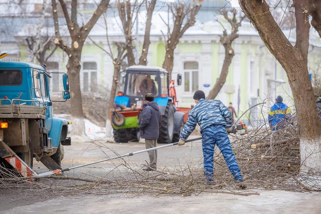 Обрезка деревьев на улицах Мурома 07