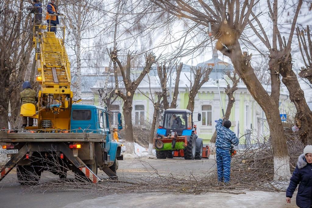 Обрезка деревьев на улицах Мурома 08