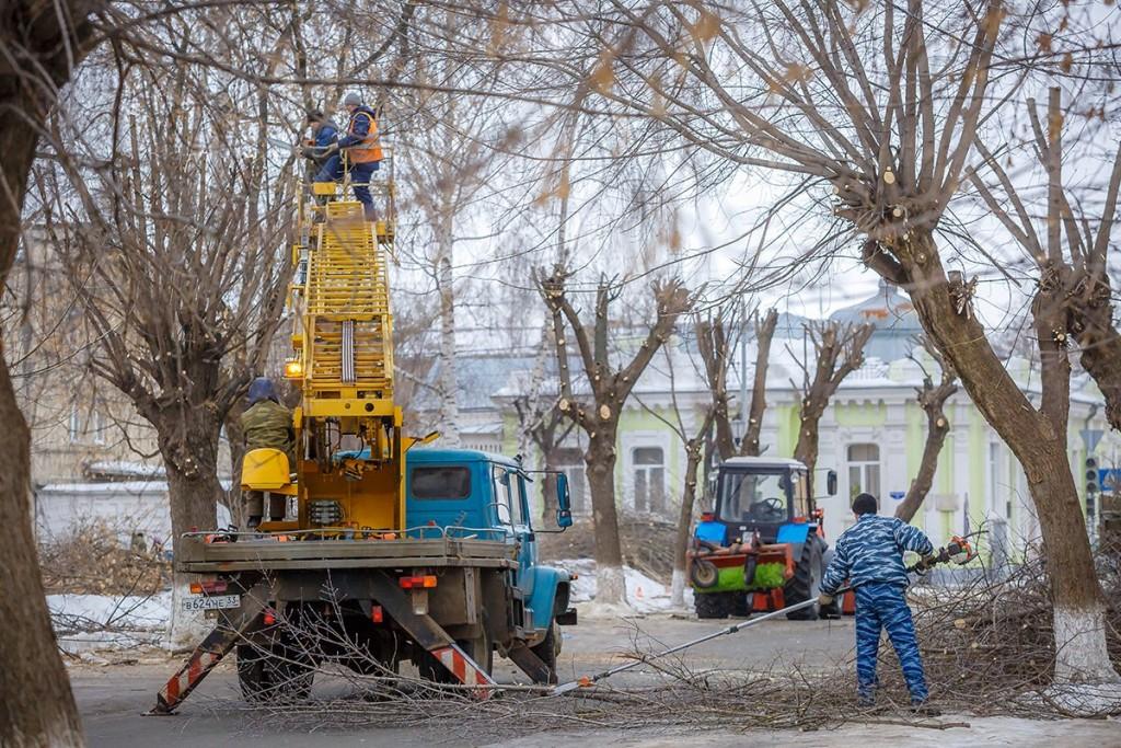 Обрезка деревьев на улицах Мурома 09