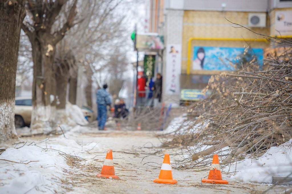 Обрезка деревьев на улицах Мурома 12