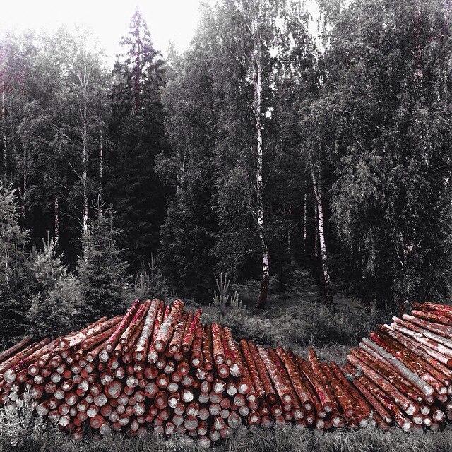 Россия, Владимирская область, пгт. Красная Горбатка, ул. Трудовая