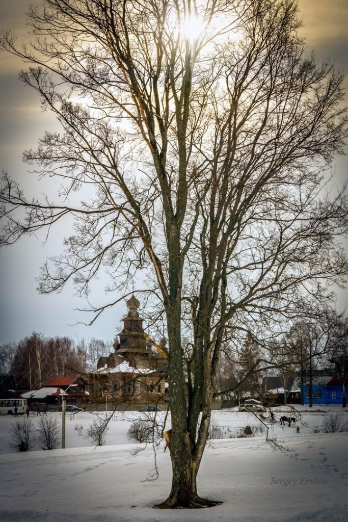 Февральский Суздаль. Фото Сергей Ершов 10