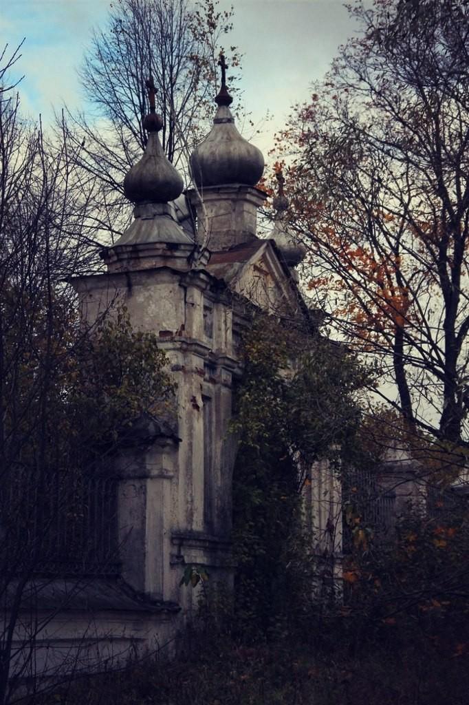 Церковь Илии Пророка (село Палищи, Гусь-Хрустальный район) 05