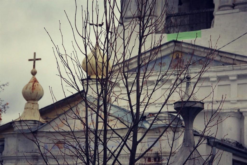 Церковь Илии Пророка (село Палищи, Гусь-Хрустальный район) 06