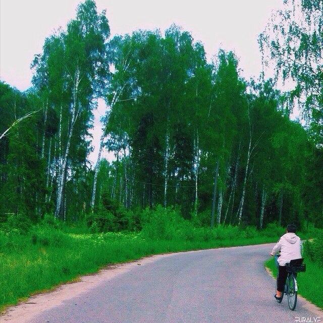пгт. Красная Горбатка, ул. Трудовая, Июнь 2015