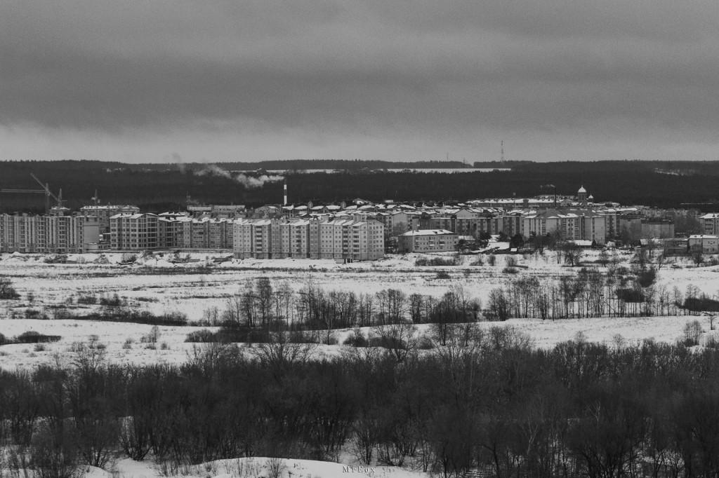 03.02.2016, Коммунар; Mr Fox