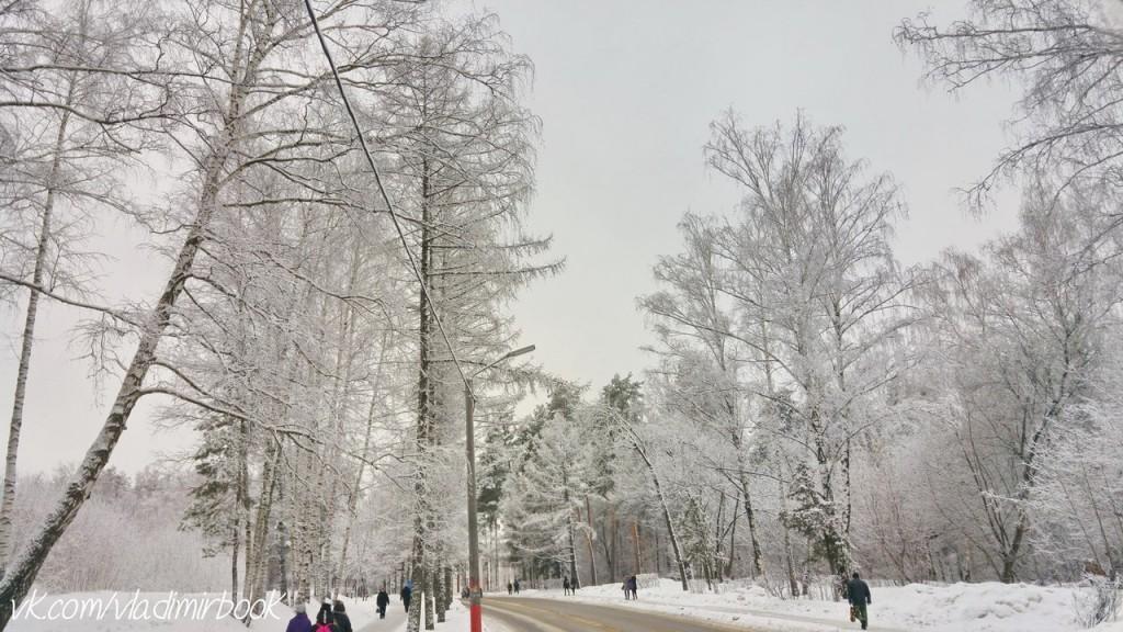 Вербовский, зима 02
