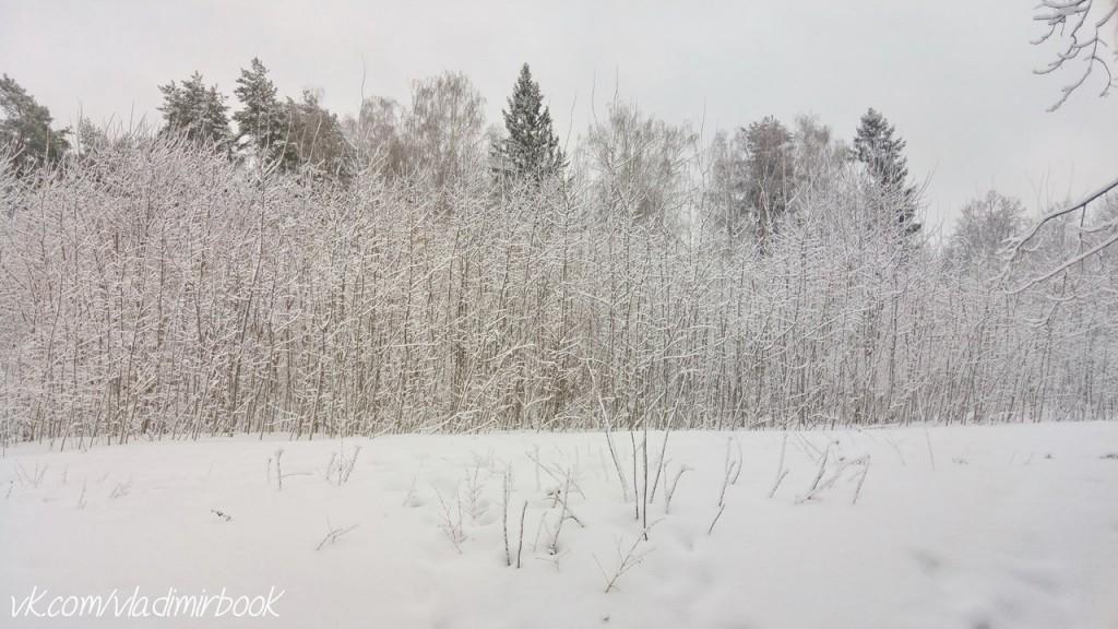 Вербовский, зима 03