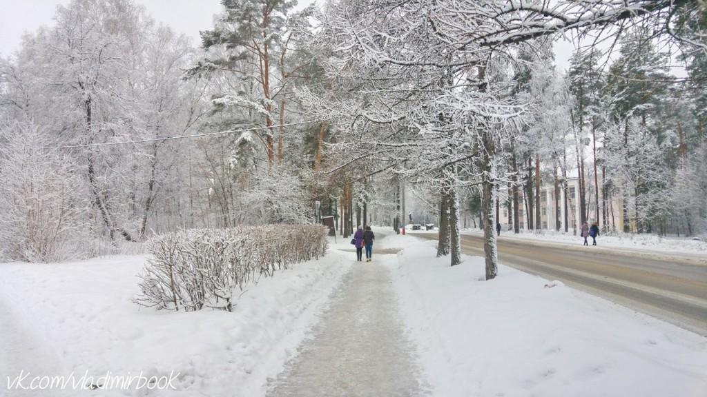 Вербовский, зима 04