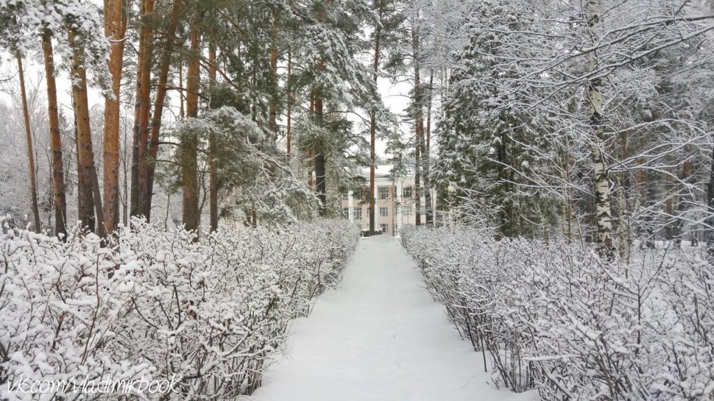 Вербовский, зима 06