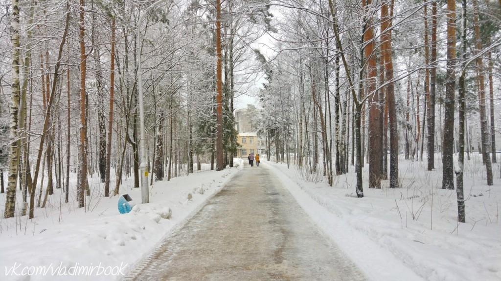 Вербовский, зима 08