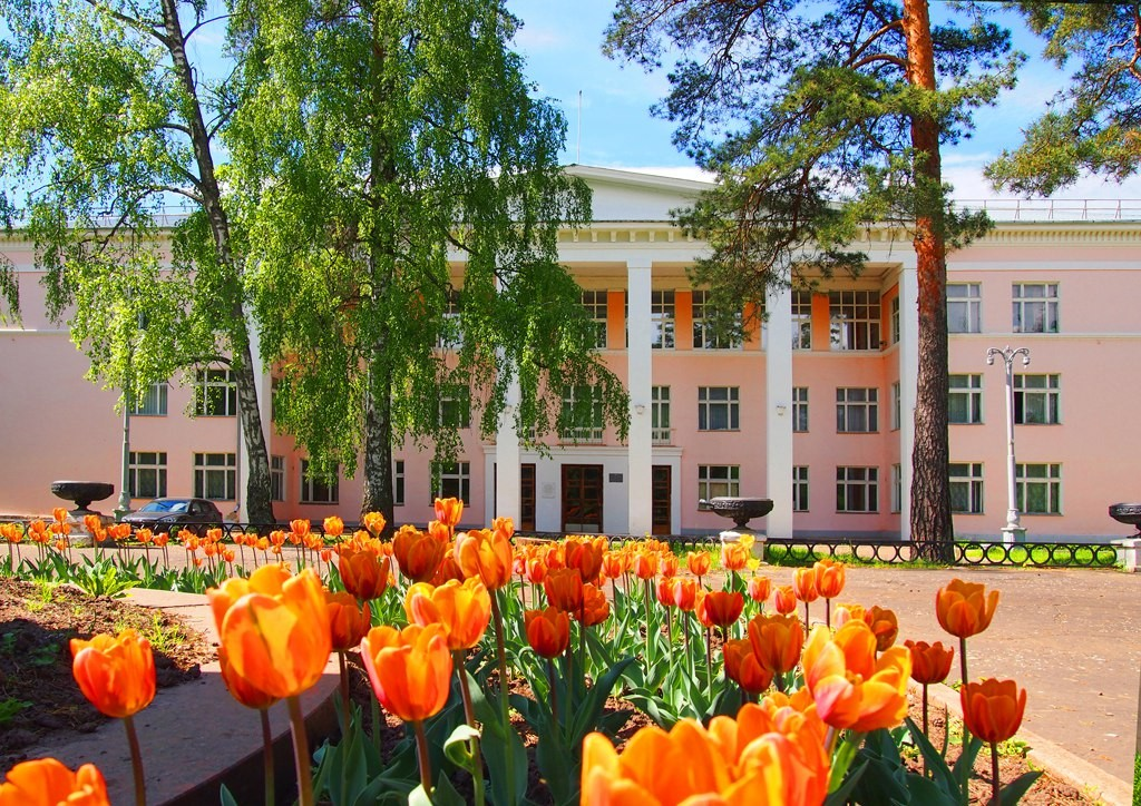Вербовский, цветы около ДК