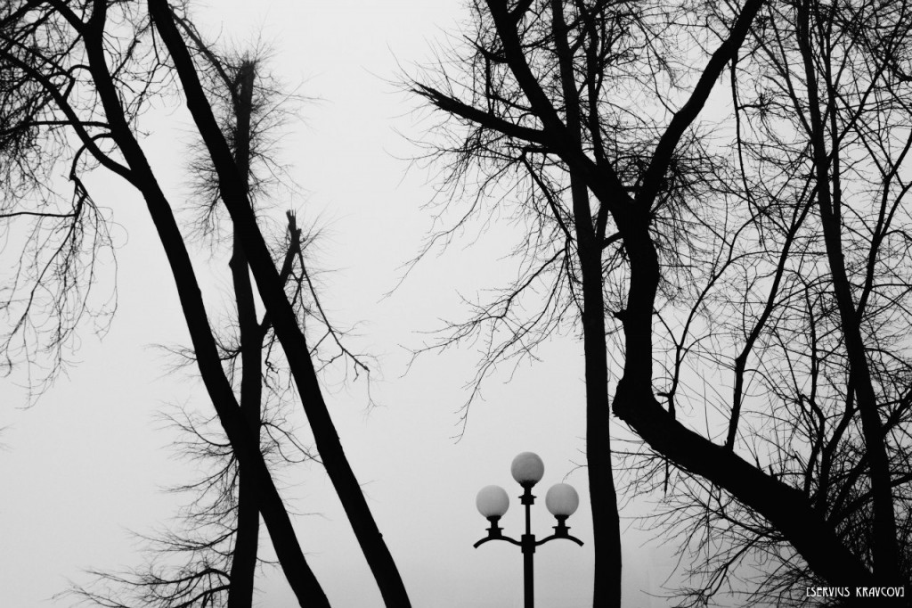 Весна 2016 (Сергей Кравцов) 01