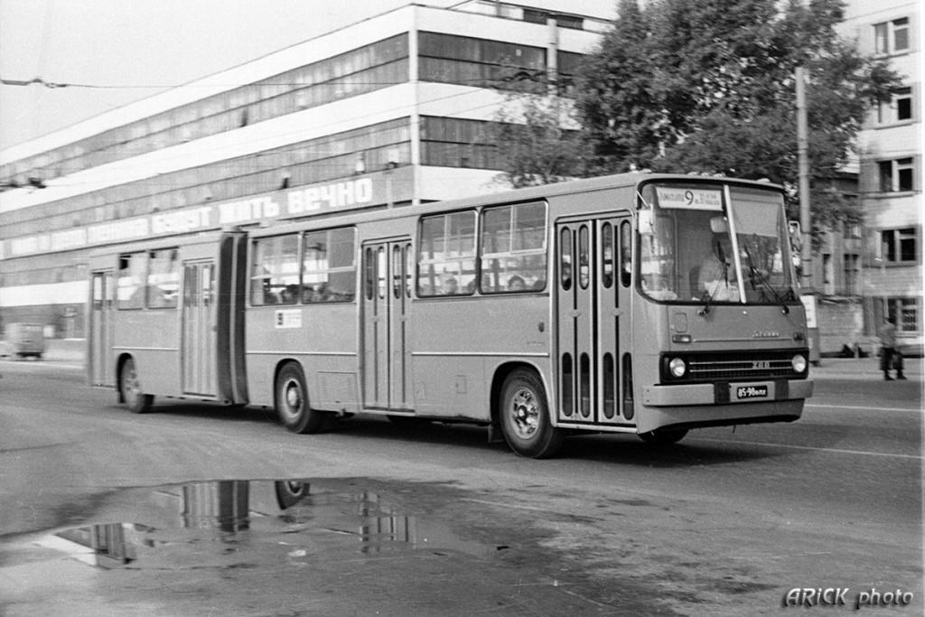 Владимирские Икарусы 80-х и один 70-х гг. 04