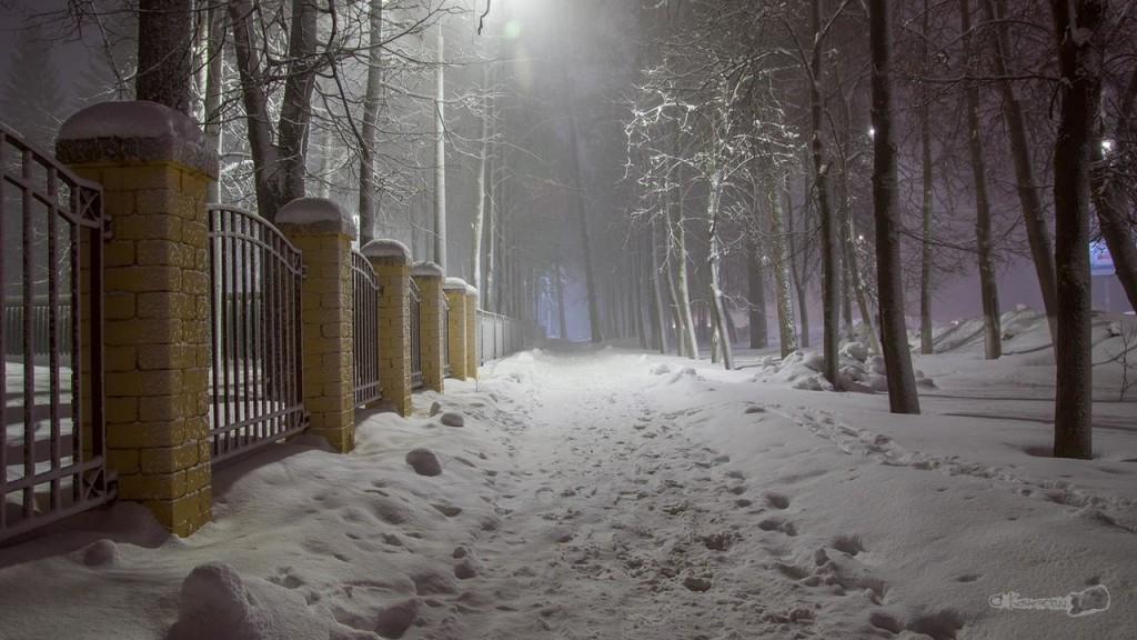 Ковров, улица Грибоедова