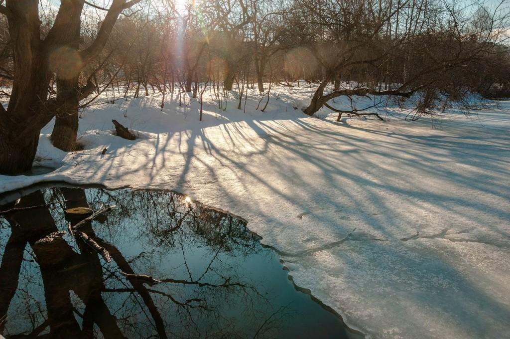 Март во Владимирском лесу 03