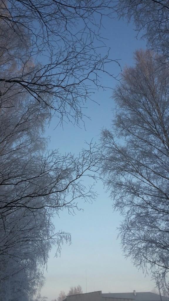 Муромский район. Февраль. 02