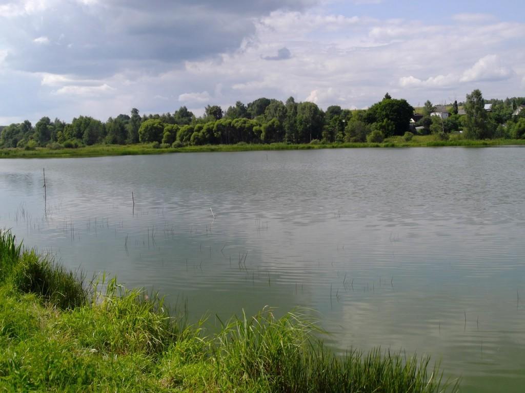 Окрестности бывшего рыбхоза поселка Ворша, Собинский район 02