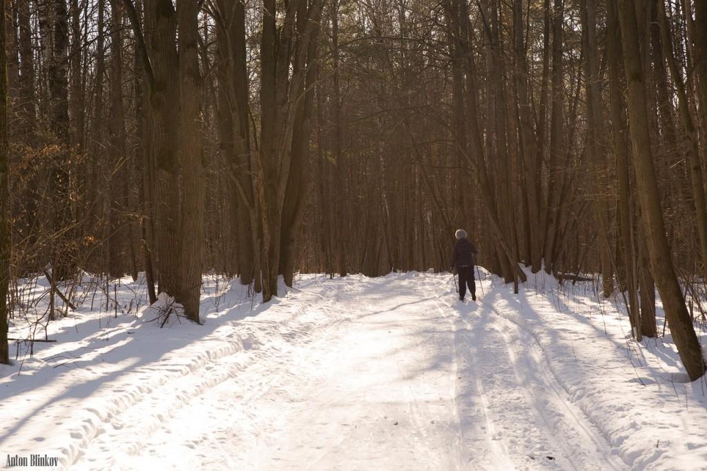 Парк Дружба. Прогулка по лыжне Алексея Прокуророва 06