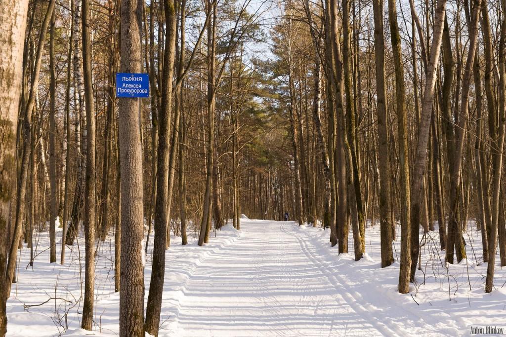 Парк Дружба. Прогулка по лыжне Алексея Прокуророва 09