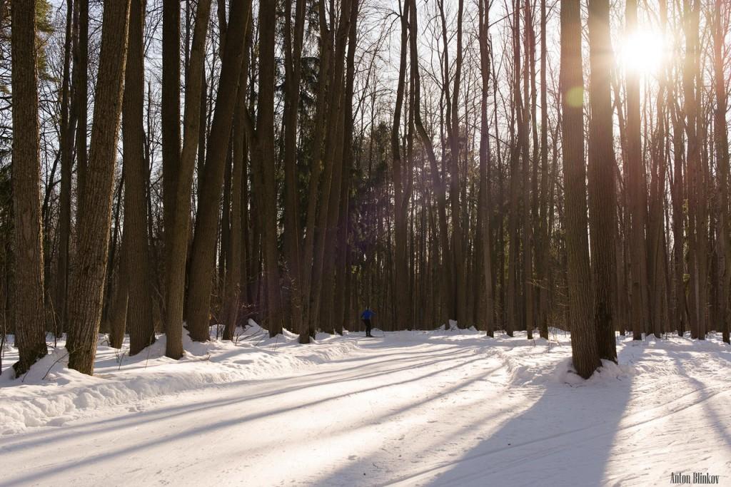 Парк Дружба. Прогулка по лыжне Алексея Прокуророва 10