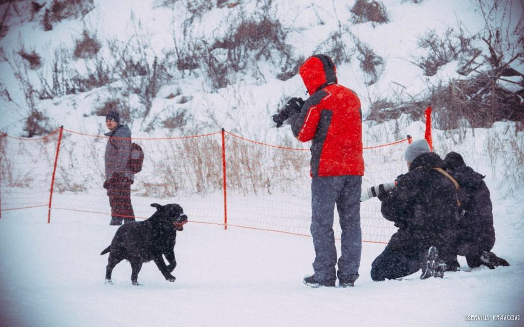 Первенство по горным лыжам на Студеной горе 2