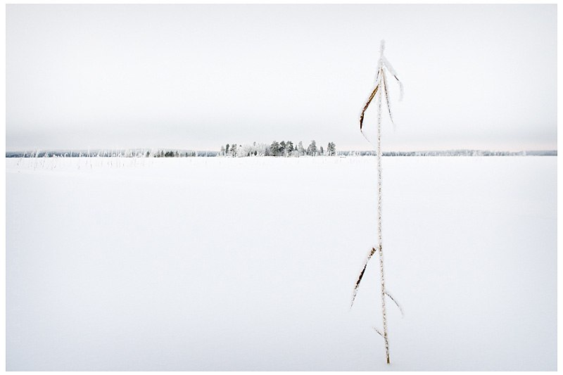 Рассвет на Белом море, дождь над озером Куйто, рассвет на Ладоге 04