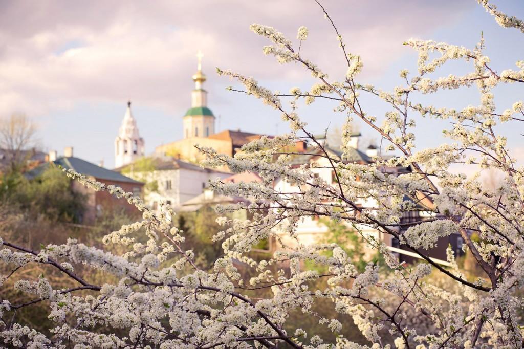 Белое кружево цветущих садов во Владимире