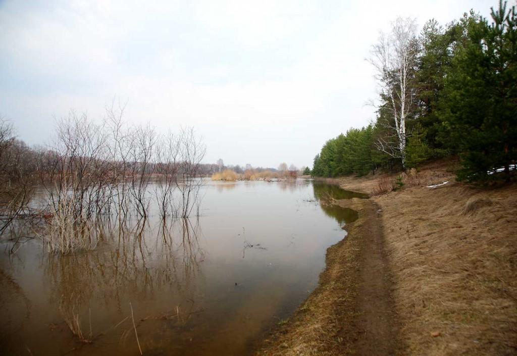 Весеннее. Село Любец Ковровского района 03