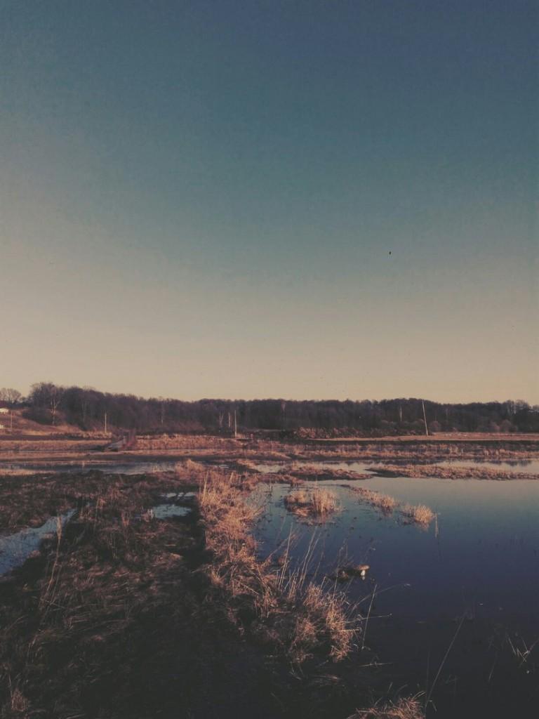 Владимиркая область, река вышла из русла 01