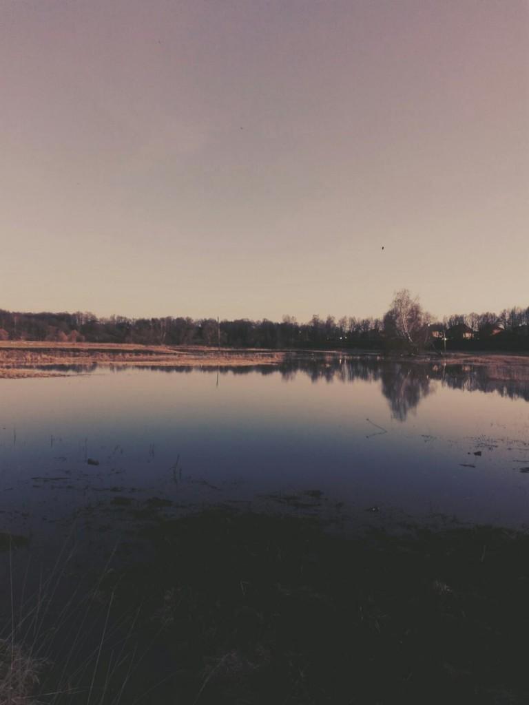 Владимиркая область, река вышла из русла 02