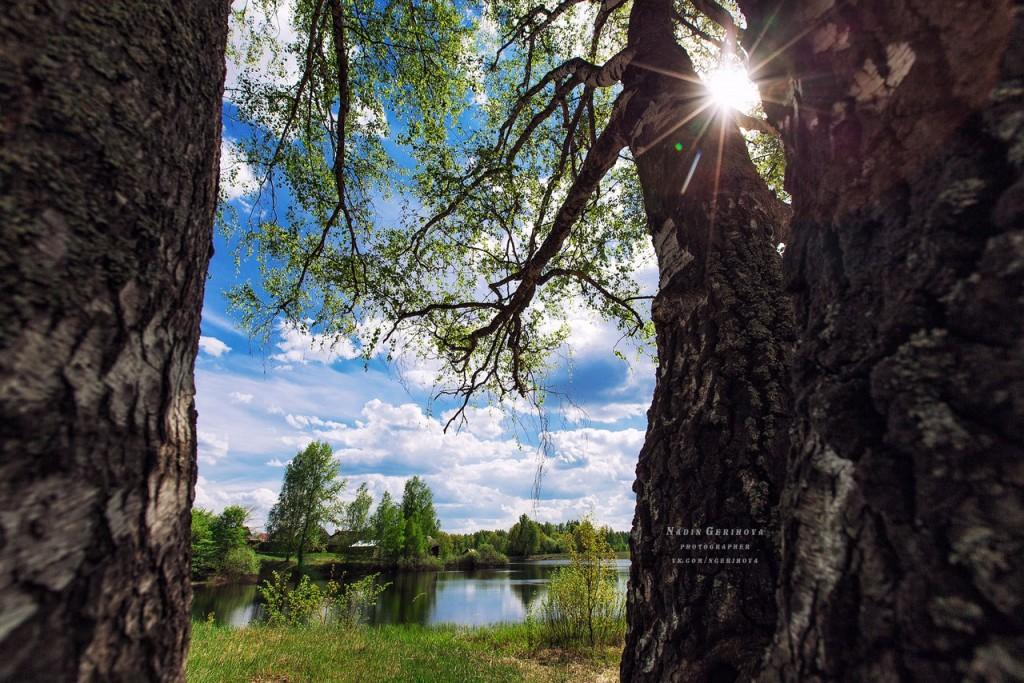 Волосатое озеро. п. Новый Быт 06