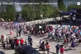 День Победы, «Бессмертный полк», Кольчугино